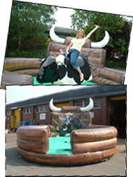 rodeo bull hire,bucking bronco hire, dorset,somerset,devon,wiltshire, hampshire,salisbury,bournemouth,poole